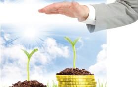 Thị trường giống cây trồng: Cạnh tranh mạnh mẽ